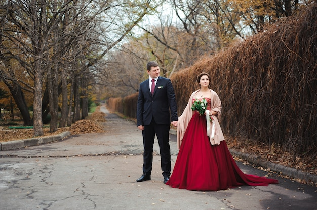 Mariée, palefrenier, étreindre, forêt, automne, forêt, mariage, promenade