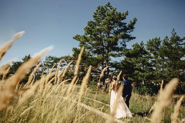 Les mariées se promènent dans les bois à travers les broussailles