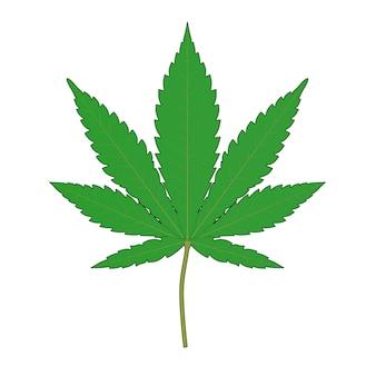 Marijuana médicale ou feuille de chanvre de cannabis dans le style de croquis et de toon sur un fond blanc. rendu 3d