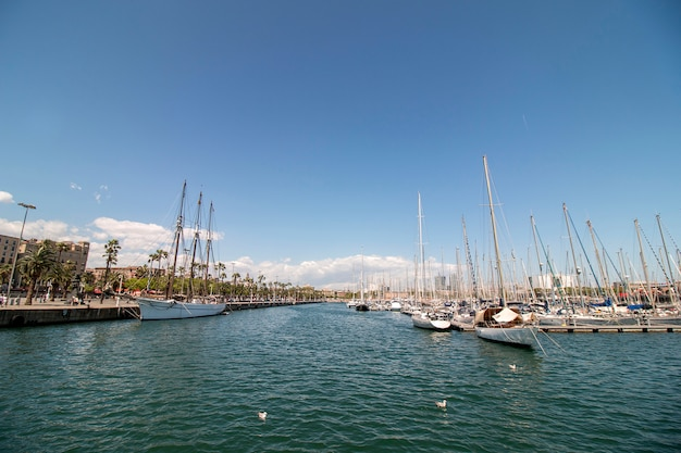 Marina située à barcelone, en espagne