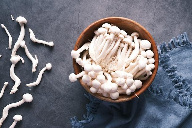 Mashroom shimeji dans un bol sur fond blanc