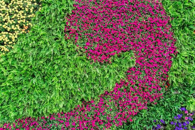 Matériel de fond de mur de fleurs et de plantes