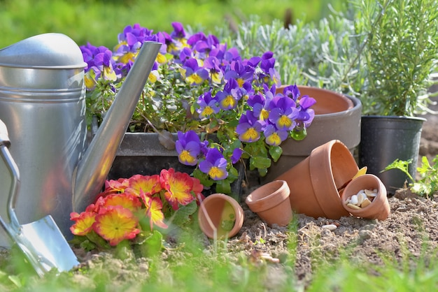 Matériel de jardinage pour travaux de printemps dans un jardin