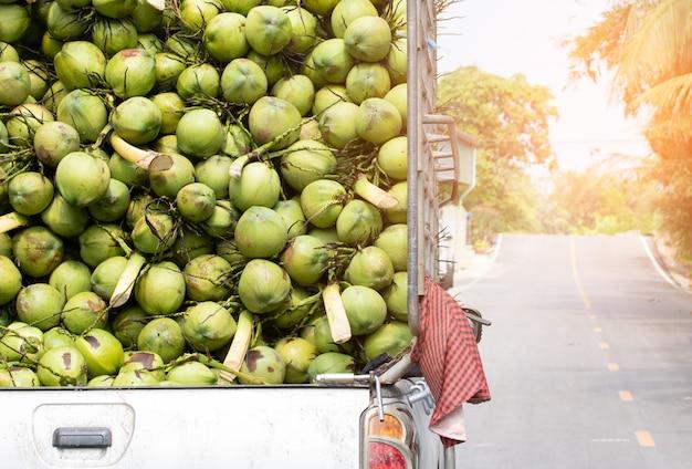 Matières premières brutes de noix de coco privatisant l'agriculture exportée de thaïlande