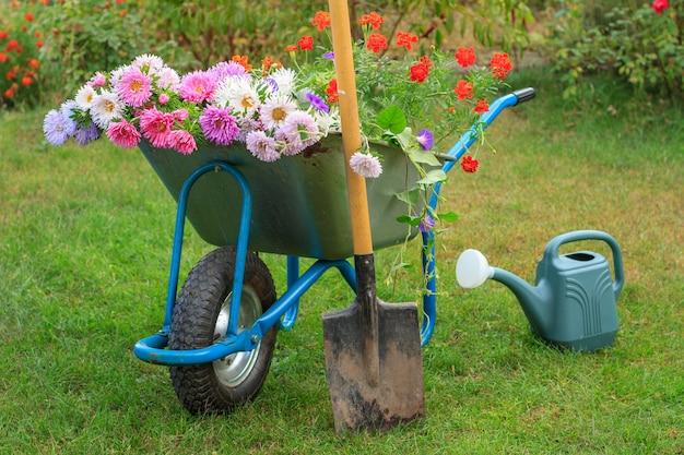 Matin après le travail dans le jardin d'été. brouette avec fleurs coupées, pelle et arrosoir sur l'herbe verte.