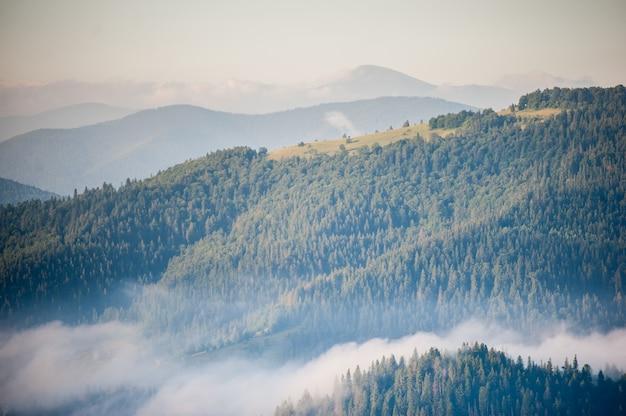 Matin avec brouillard sur les pentes de la montagne