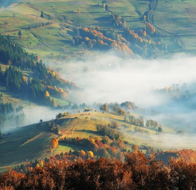 Matin brumeux à l'automne carpates