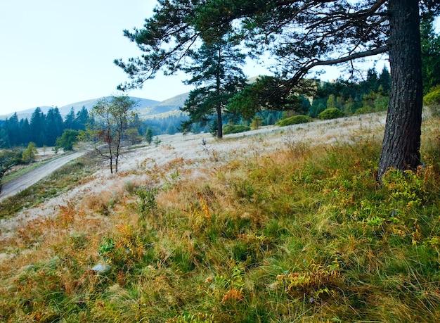 Matin brumeux paysage de montagne d'automne avec route de campagne à flanc de montagne, région d'ivano-frankivsk, ukraine