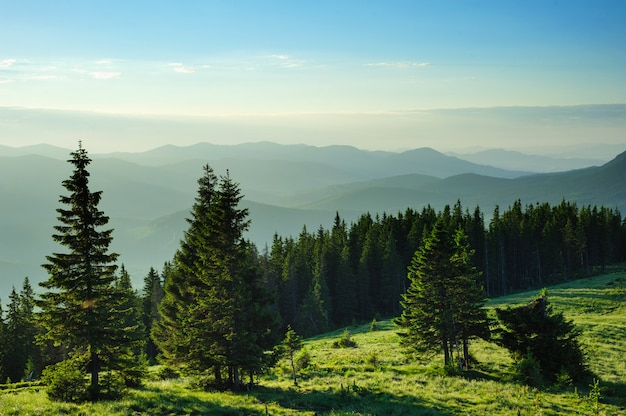 Matin dans les montagnes