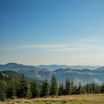 Matin journée ensoleillée dans un paysage de montagne