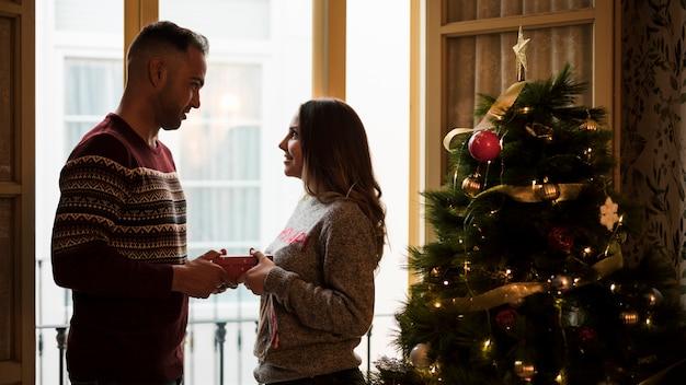 Mec, présenter cadeau, et, regarder, dame, près, arbre noël