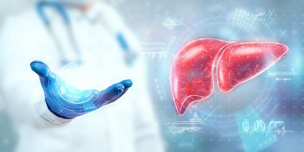 Le médecin examine l'hologramme du foie, vérifie le résultat du test sur l'interface virtuelle et analyse les données. maladie du foie, don, technologies innovantes, médecine du futur