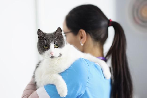 Médecin vétérinaire tient le chat dans ses bras