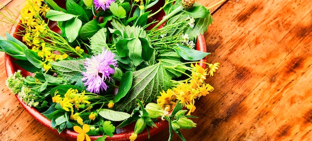 Médecine alternative, ensemble d'herbes médicinales et de fleurs.médecine naturelle et homéopathie.table en bois