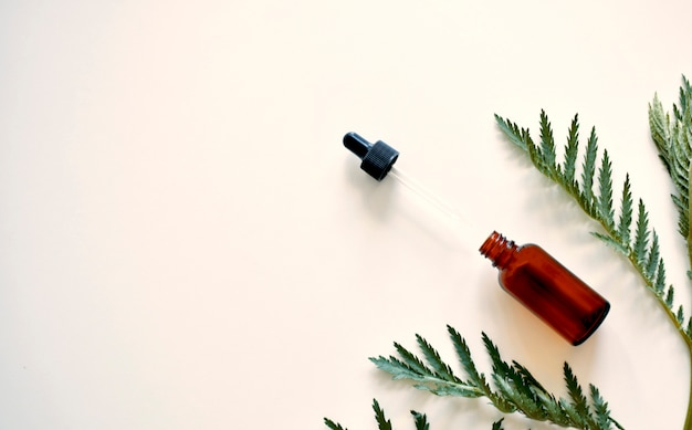 Médecine douce. feuilles d'herbes médicinales, une bouteille sur fond blanc.