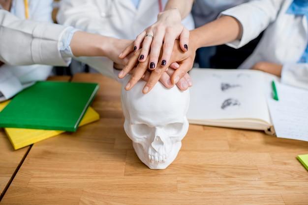 Médecins se tenant la main sur le crâne de gypse sur le bureau avec des livres