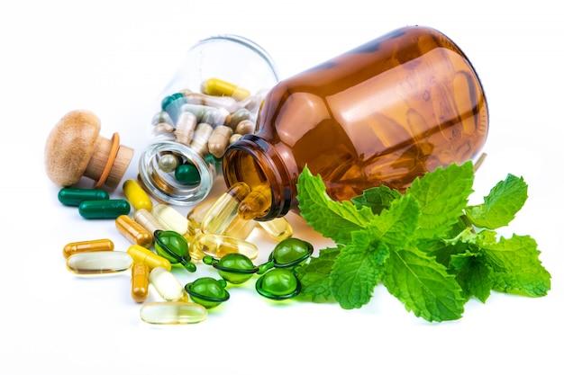 Médicament à base de plantes à la menthe à base de plantes pour une bonne santé