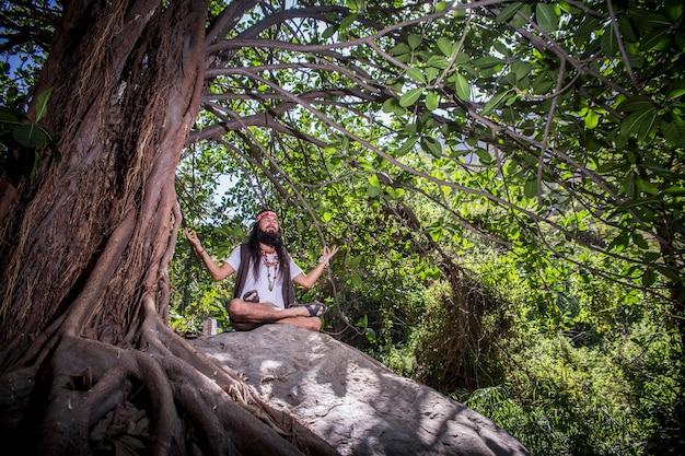 Méditation en forêt - 1