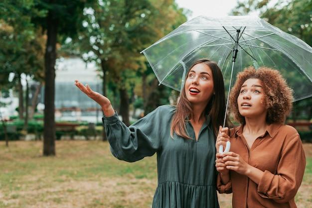 Meilleurs amis debout sous leur parapluie