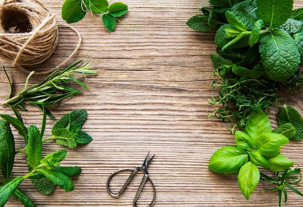 Mélange d'herbes fraîches du jardin sur une vieille table