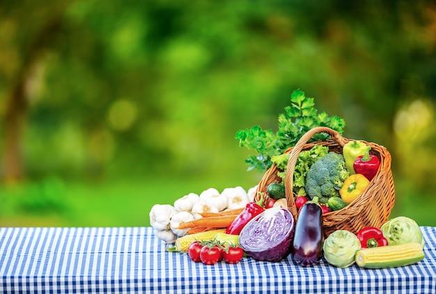 Mélange de légumes frais sur table dans le jardin d'arrière-plan assortiment de légumes frais en gros plan