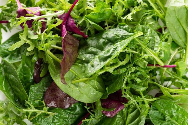 Mélange de salade d'herbes fraîches close up