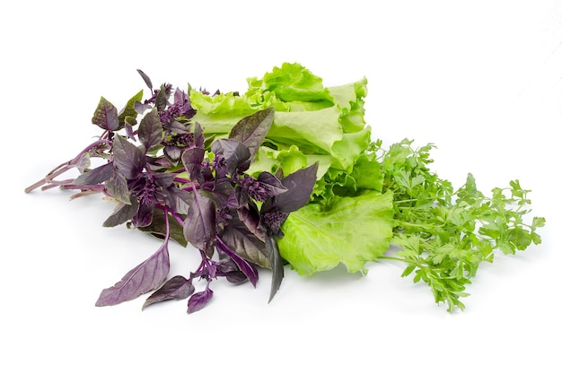Mélange de salade isolé sur une découpe blanche