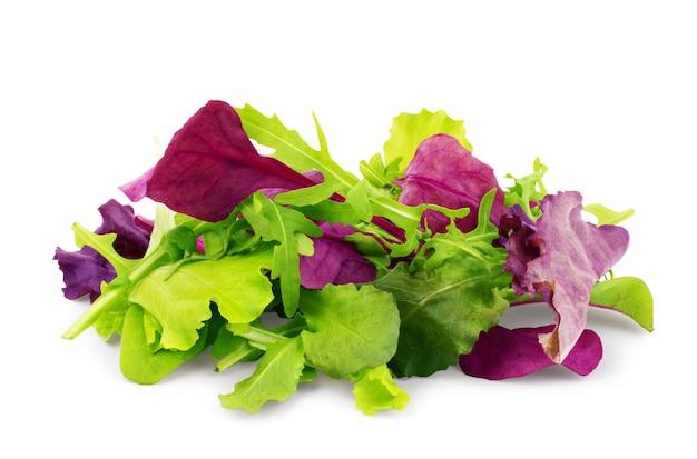Mélange de salade roquette frisee radicchio et épinards sur fond blanc