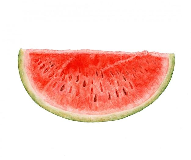 Melon d'eau aquarelle isolé sur fond blanc.