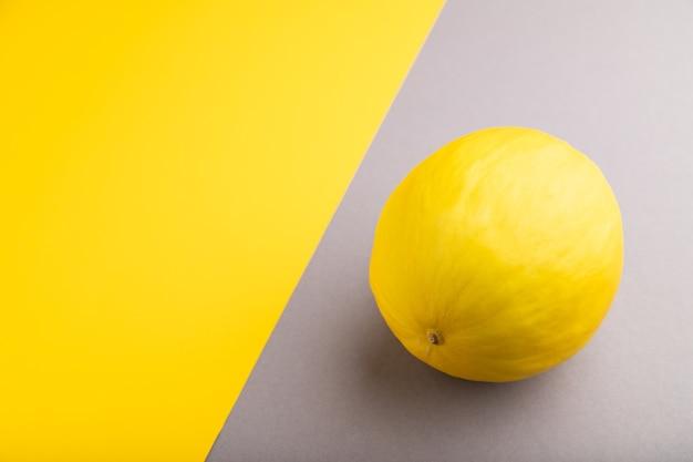Melon jaune mûr sur fond pastel gris et jaune. vue latérale, copiez l'espace. récolte, sain,