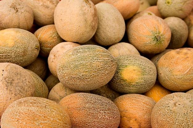 Melon-melon, gros plan