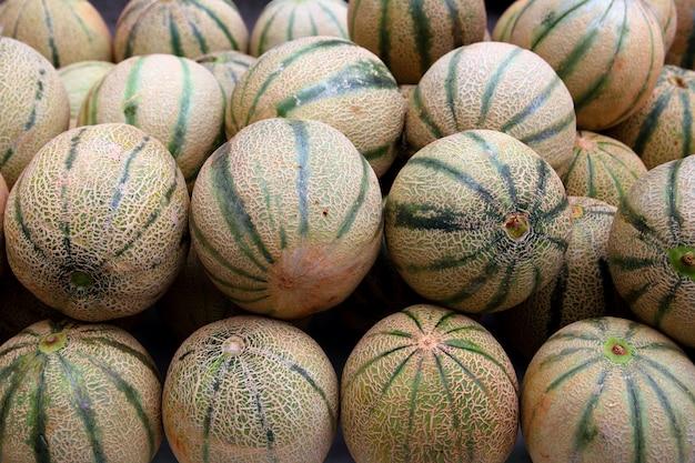 Melon melon rock melon spanspek