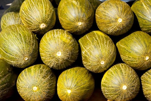 Melon de noël ou père noël piel de sapo