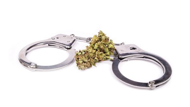 Menottes et bourgeon de cannabis séché, légalisation de la drogue.