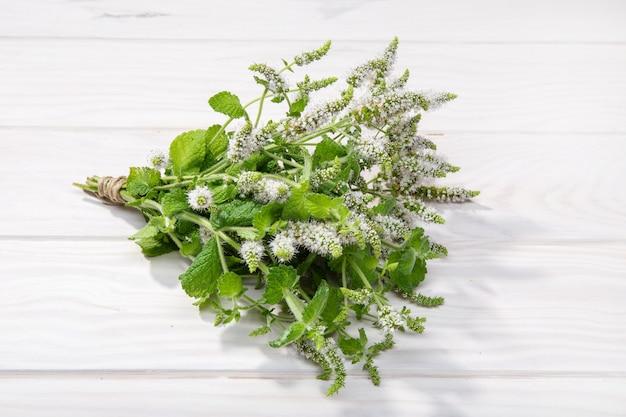 Menthe poivrée fraîche avec fond de fleurs