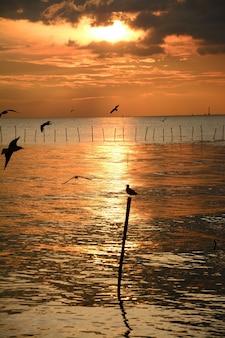 Mer au crépuscule centre de loisirs de bangpu, thaïlande