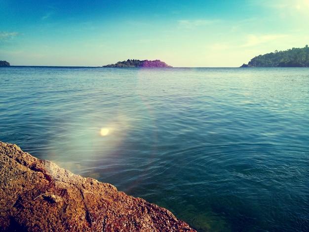 Mer océan nature forêt vue concept