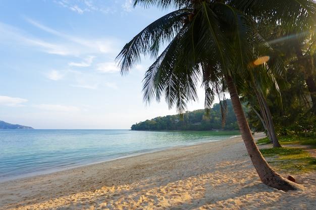 Mer. paradis tropical.