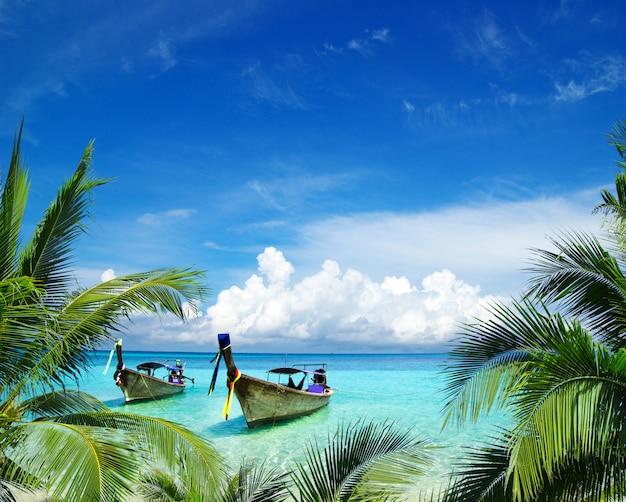 Mer tropicale
