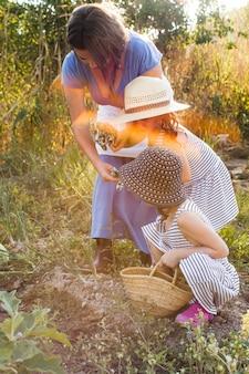 Mère donnant des gants à ses deux filles récoltant dans un champ