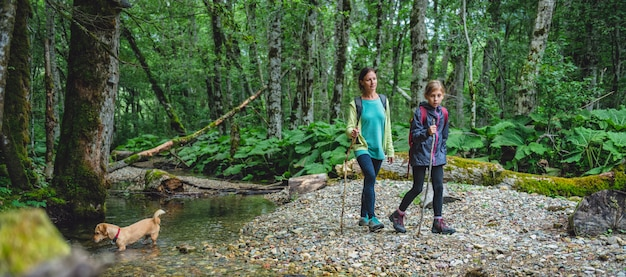 Mère et fille avec un chien en randonnée dans la forêt