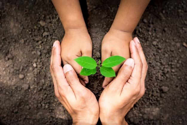 Mère et fille plantant une plante dans le sol