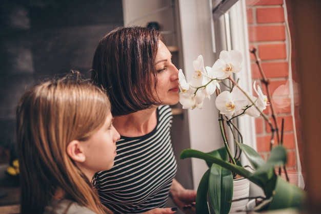 Mère et fille vérifiant une orchidée sur la fenêtre