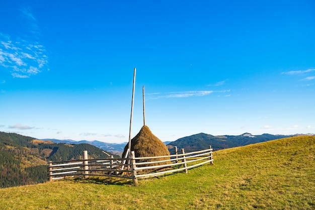 Merveilleuse nature des carpates représentée dans les collines, les forêts, les prairies et le ciel extraordinaire
