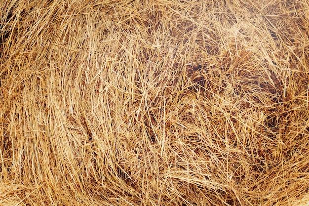Meule de foin après la récolte. structure, fond