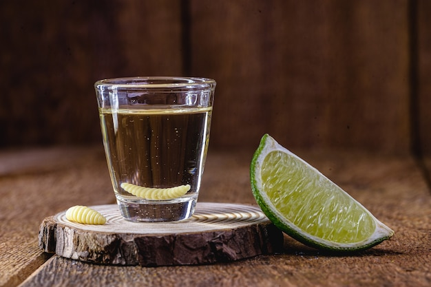 Mezcal, boisson exotique du mexique avec de la tequila et une larve à l'intérieur.