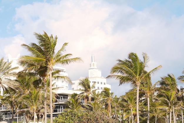 Miami beach avec des palmiers.