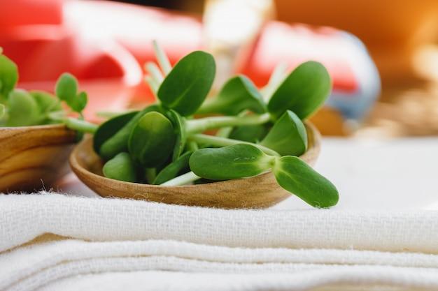 Micro verts dans une cuillère en bois sur une serviette en coton