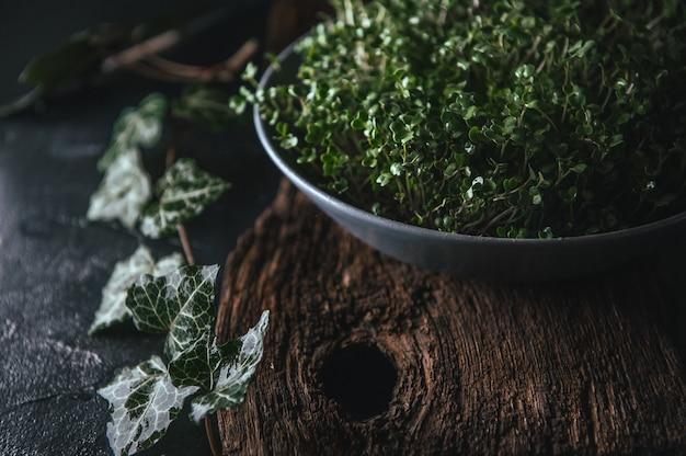 Microgreen dans un plat gris sur un bois rustique