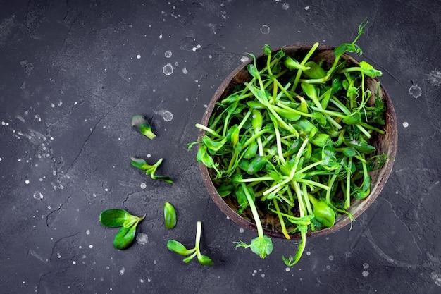 Micropousses fraîches pour salade dans une vue de dessus de bol. photo de haute qualité